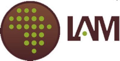 logo_LAM.jpg